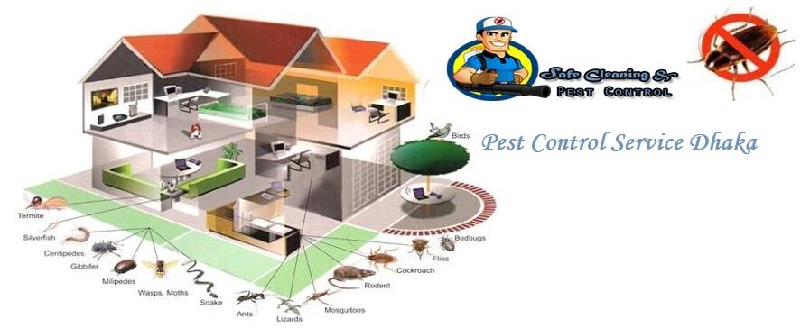 pest control service dhaka